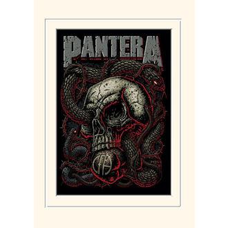 obraz Pantera - (&&string0&&) - PYRAMID POSTERS, PYRAMID POSTERS, Pantera