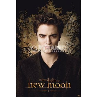 plagát Twilight - New Moon (Edward Trees) - PYRAMID Posters, TWILIGHT