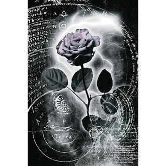 plagát Mercury Rose, Reinders