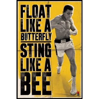 plagát Muhammad Ali - Float Like A Butterfly - PYRAMID POSTERS