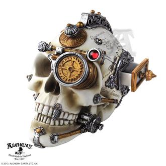 dekorácia Alchemy Gothic - Erasmus Darwin's Steam-Cerebrum Skull, ALCHEMY GOTHIC