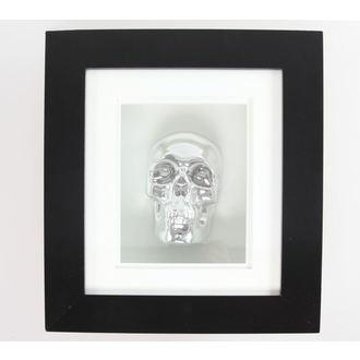 obraz Silver Skull In Frame