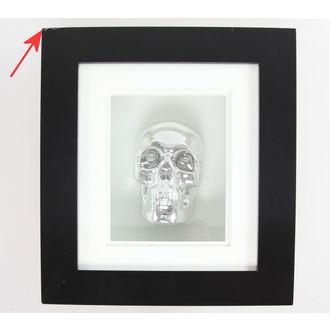 obraz Silver Skull In Frame - POŠKODENÝ