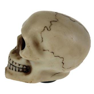 dekorácia (hlavica radiacou páky) Skull Gear, NNM