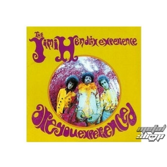 figúrka (3D obrázek) JIMI HENDRIX are you experienced plaque Figure , Jimi Hendrix