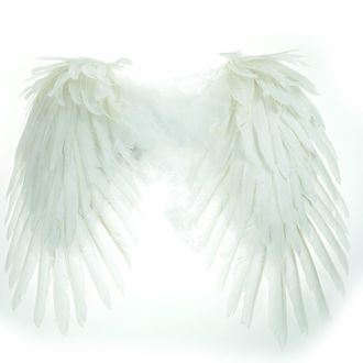 krídla Poizen Industries - FAIRY - WHITE, POIZEN INDUSTRIES