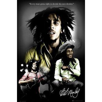 plagát - BOB MARLEY destiny - LP1328, GB posters, Bob Marley