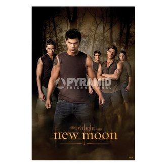 plagát Twilight - New Moon (Wolf Pack) (Súmrak) - PP32065, TWILIGHT