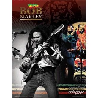 obraz 3D Bob Marley - PPL70046, PYRAMID POSTERS, Bob Marley