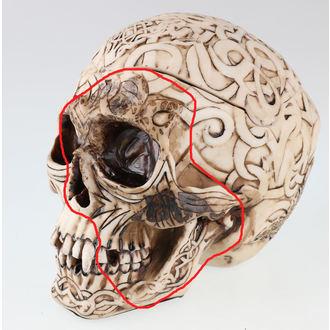 krabička na drobnosti Celtic Skull - POŠKODENÁ, NNM