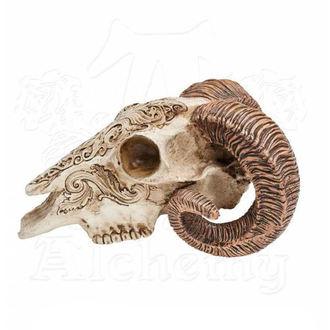 dekorácia ALCHEMY GOTHIC - Skrimshaw Ram Skull, ALCHEMY GOTHIC